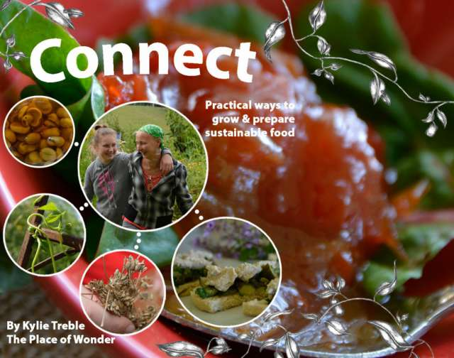 Connect - book cover